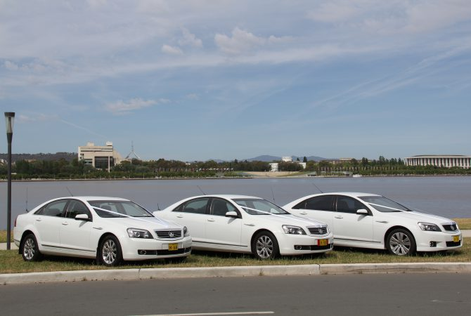 Canberra Hire Car fleet dressed for a wedding